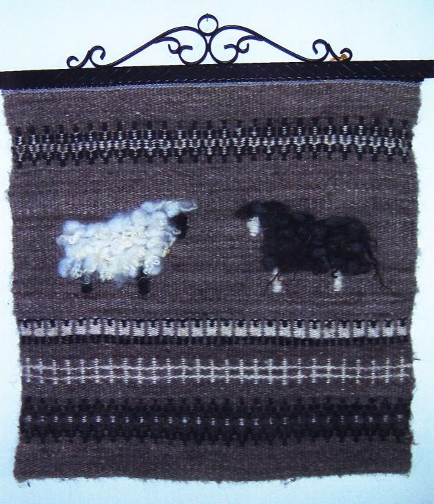 nancy-krokbragd-sheep